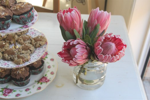 proteas and cupcakes
